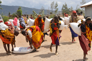 The Narosura women of Kenya load up their grain bags. There won't be empty stomachs tonight.