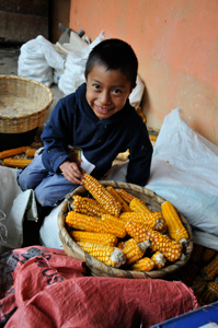 boy in guatemala with corn