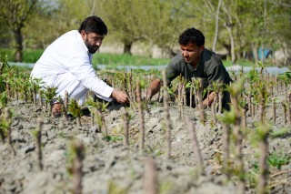 Atiq Ullah is eager to show others farmers how they can grow more food.