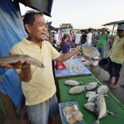 Man sells fish in typhoon-ravaged Philippines city