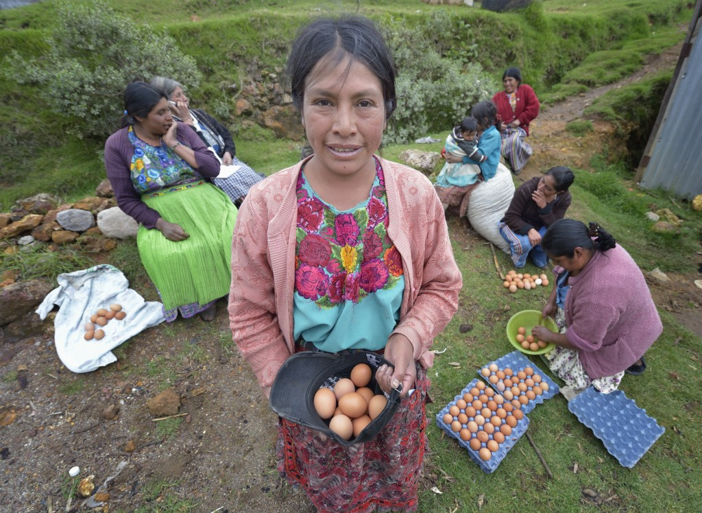 Maria Oralia Jiguan shows her share of the eggs produced in a women's cooperative poultry raising project in Buena Vista Bacchuc, a small Mam-speaking Maya village in Comitancillo, Guatemala. Photo: Paul Jeffrey