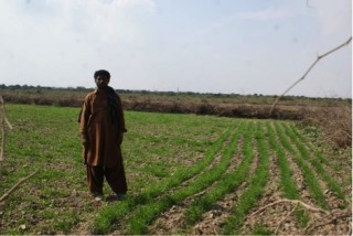 Rano, a farmer from Sajawal, is thankful for the support his family has received