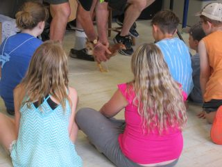 St. David's Vankoughnet and Knox in Bracebridge, ON host an animal-themed VBS.
