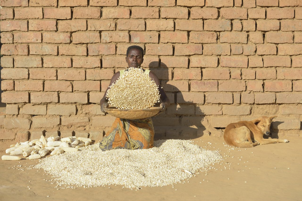 Malawi Food Security 3