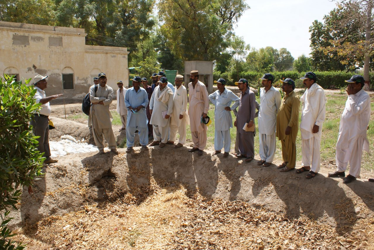 Food Security in Badin, Pakistan 6