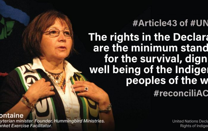 Mary Fontaine UNDRIP