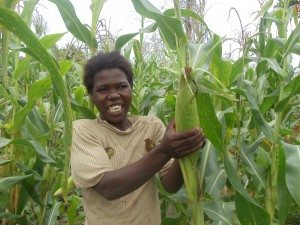 Failesi shows off the ripe corn in her field