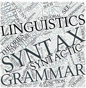 Syntax Disciplines Concept