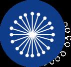 starburst - icon